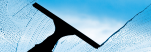 Carolina Pro Clean window cleaning banner