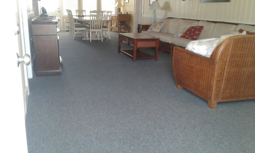 Carolina Pro Clean carpet 3