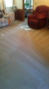 Carolina Pro Clean carpet 4