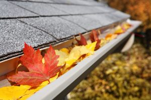 Carolina Pro Clean gutter cleaning