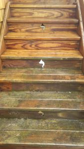 Carolina Pro Clean power washed stairs