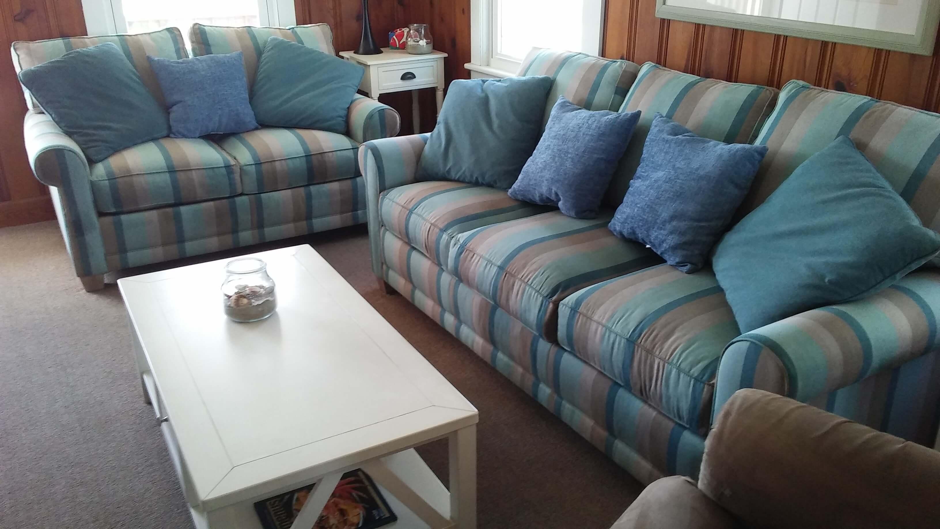 Carolina Pro Clean upholstery 2
