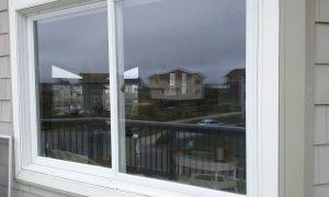 Carolina Pro Clean windows 2
