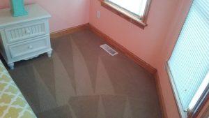 Carolina Pro Clean carpet 7
