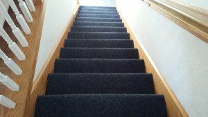 Carolina Pro Clean carpet 8