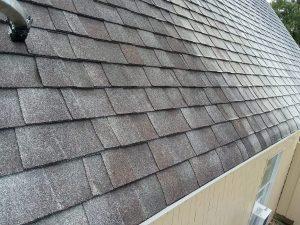 Carolina Pro Clean roof 10