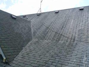 Carolina Pro Clean roof 2