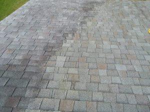 Carolina Pro Clean roof 4