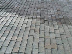 Carolina Pro Clean roof 5