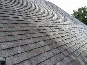 Carolina Pro Clean roof 7