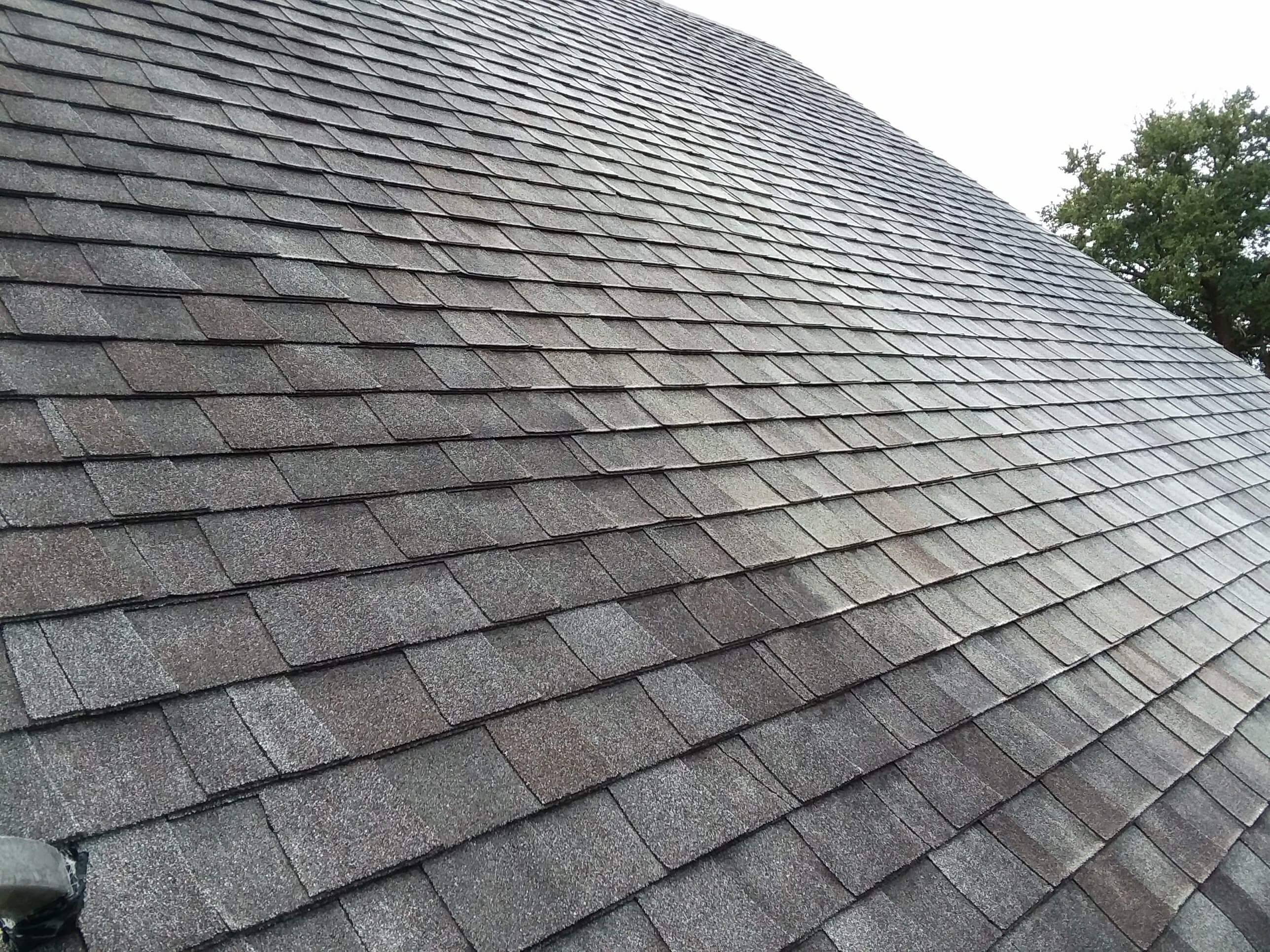 Carolina Pro Clean roof 7