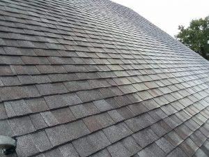 Carolina Pro Clean roof 8