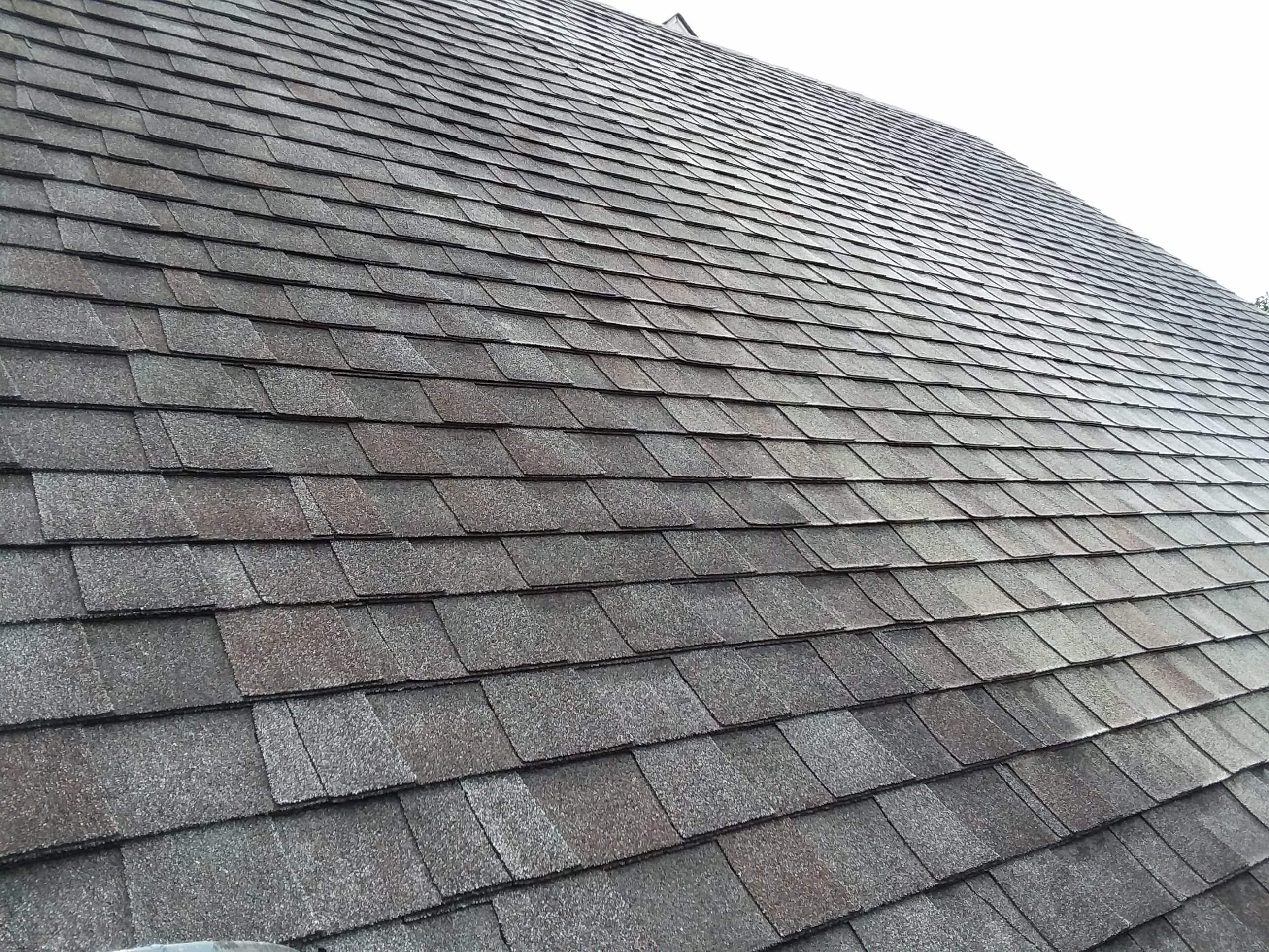Carolina Pro Clean roof 9