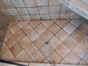 Carolina Pro Clean tile grout 1