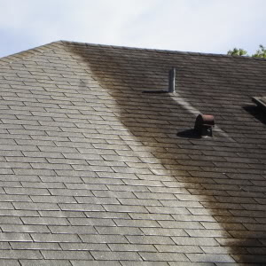 Carolina Pro Clean roof cleaning